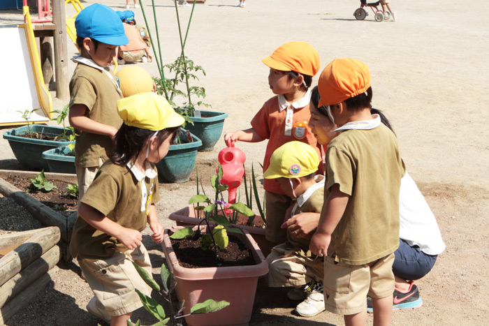 """子どもの命を守る""""玄米和食""""の自園給食を行っています。"""